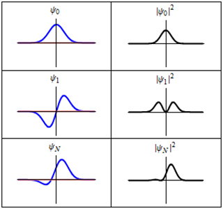 Six curve graphs show wave function and probability distribution.